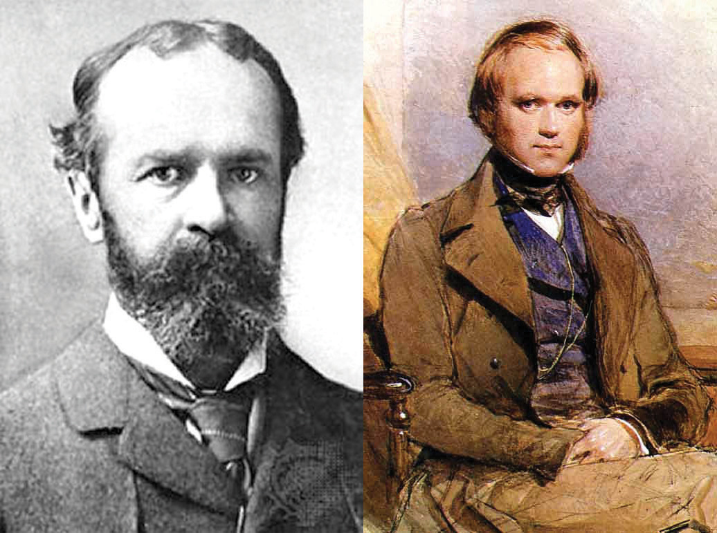 On the left, this picture shows a portait of William James; on the right, this painting shows a portait of young Charles Darwin.