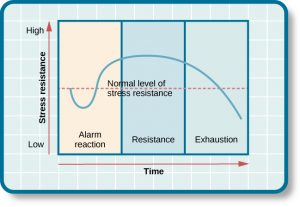 """This chart contrasts stress resistance by time. It shows the three stages of Selye's general adaption syndrome: alarm reaction, resistance, and exhaustion. The x-axis represents time while the y-axis represents stress levels. The x-axis is labeled """"Time"""" and the y-axis is labeled """"Stress resistance."""" The graph shows that an increase in time and stress ultimately leads to exhaustion."""