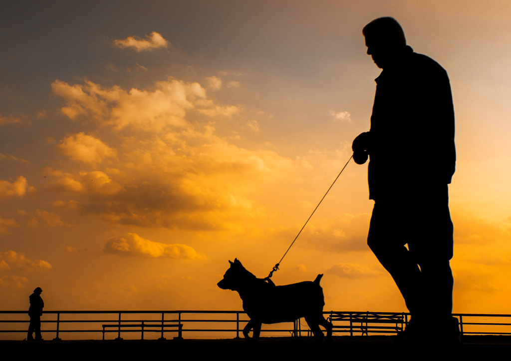 This picture shows a man walking a dog on a leash at sunset.