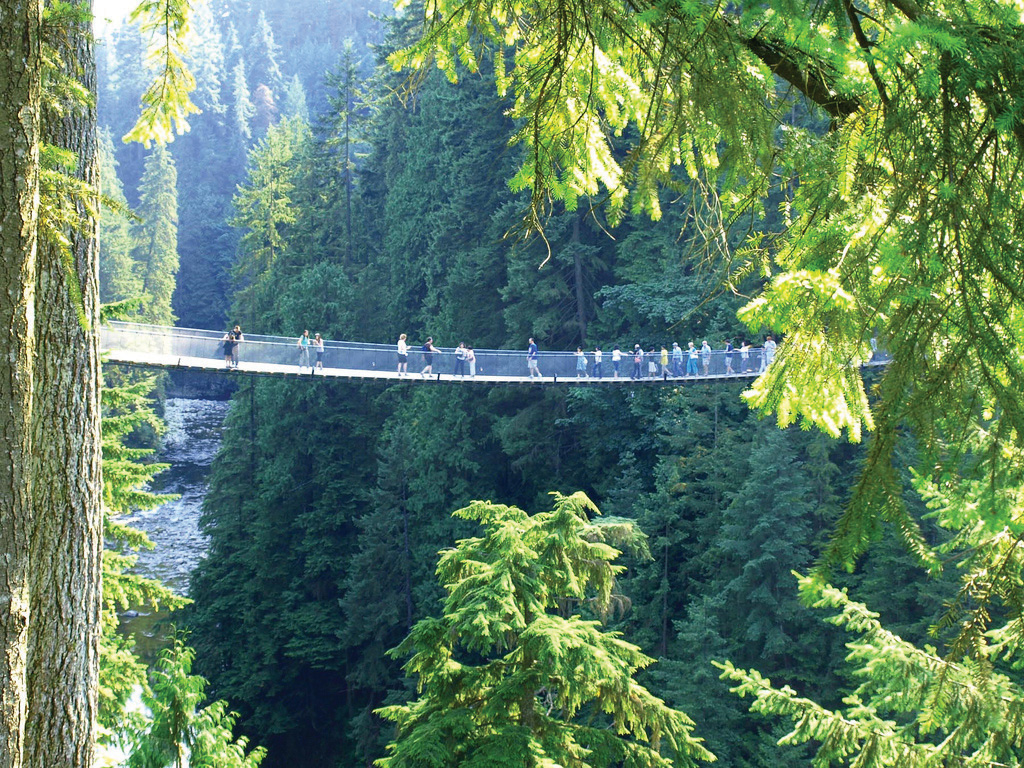 This picture shows people walking along the Capilano Suspension Bridge.