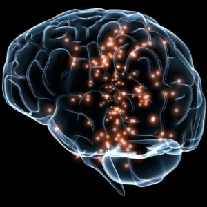 This diagram illustrates neuronal activity in the human brain.